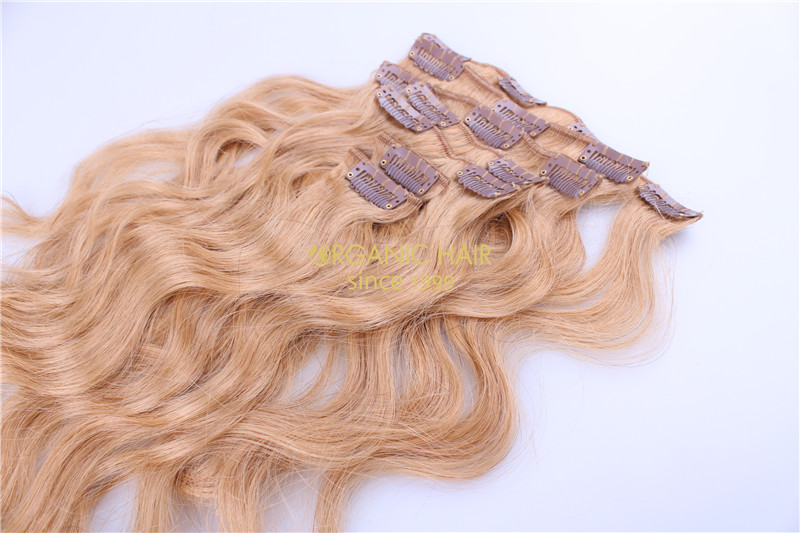 Curly and colored human hair extensions clip in