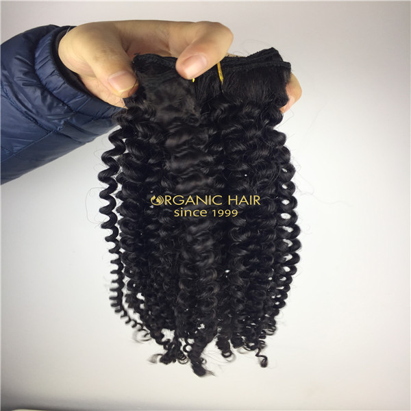 Clip on extensions cheap human hair wholesale
