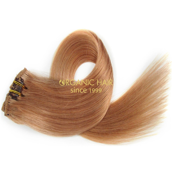 Hollywood hair clips remy hair extensions reviews 27 china oem hollywood hair clips remy hair extensions reviews 27 pmusecretfo Images