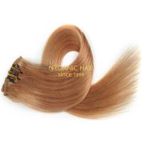 Hollywood hair clips remy hair extensions reviews #27