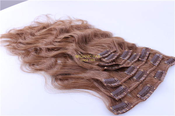 efb54a1d0d5 wholesale clip in human hair extensions online shop, China OEM ...