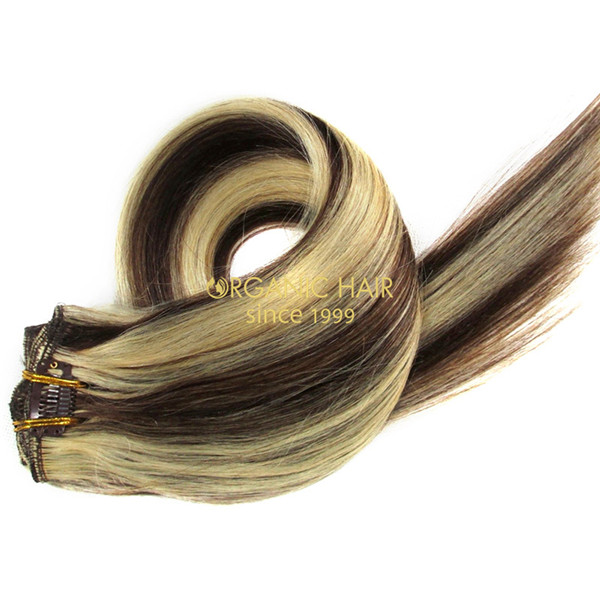 Sallys luxury hair cheap clip in human hair extensions