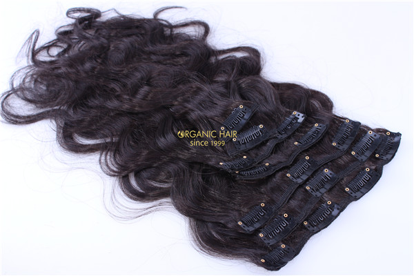 where can i buy human hair clip in extensions