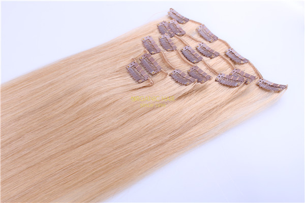clip in extension remy hair extensions cost