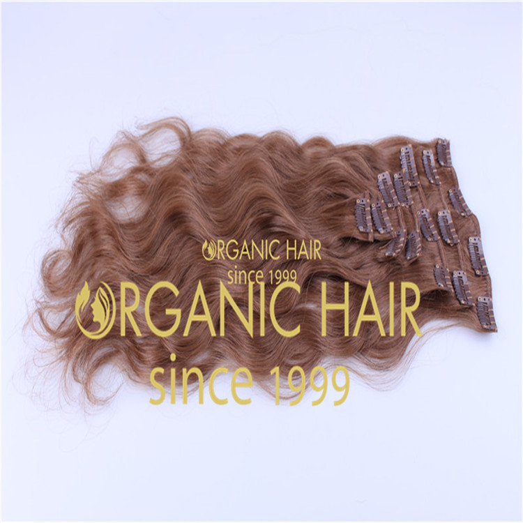 Clip in Hair Extensions H9