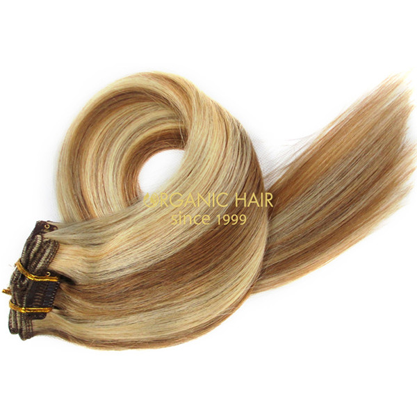 wholesale high quality clip in  virgin human hair extensions A5