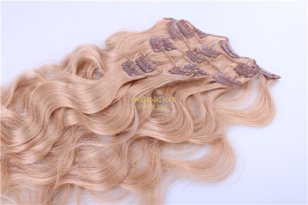 clip in human hair extensions hair pieces melbourne