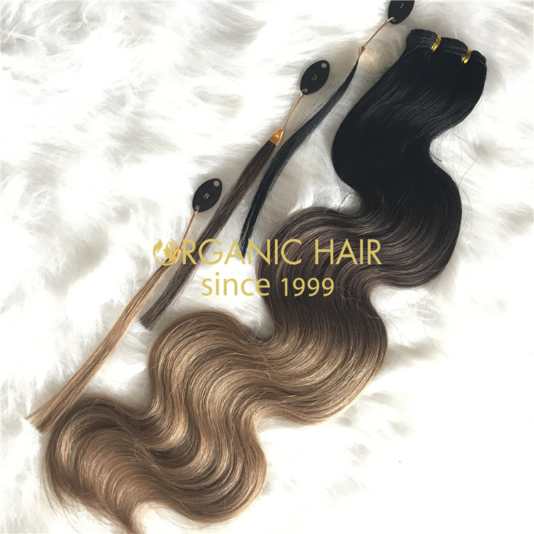 Customized human hand tied wefts rooted color body wave X208