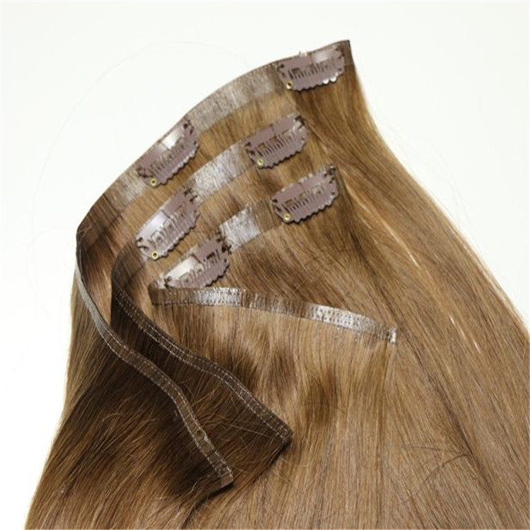 Remy Human Hair Clip Ins H2