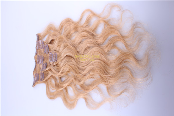 20inch piano color 27/ 613 clip in hair and extensions