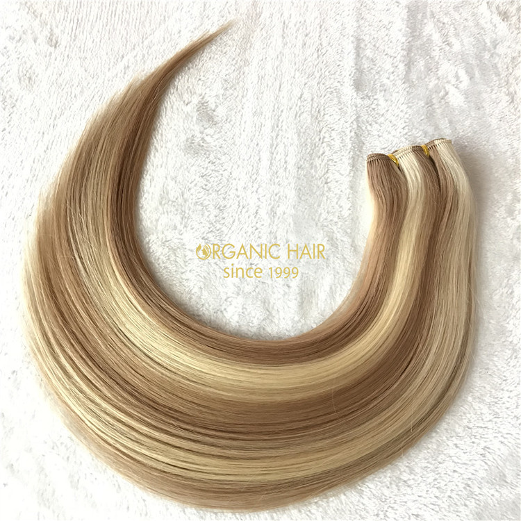 Wholesal virgin single donor human handtied weft V01