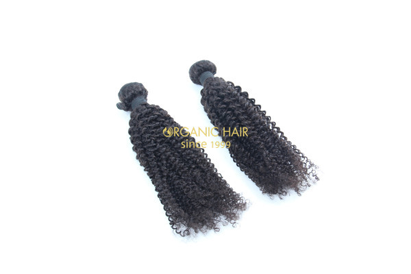 Wholesale kinky curly brazilian human hair extensions