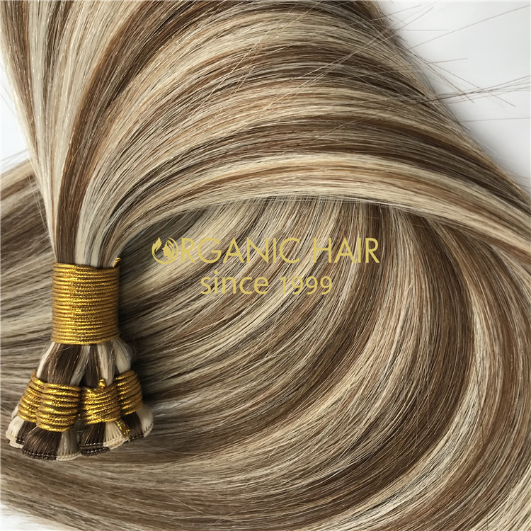 Wholesale hand tied wefts hair extensions X295