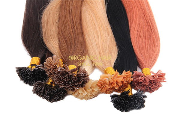 Wholesale U tip pre bonded hair extensions