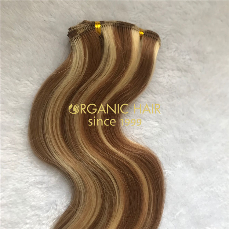 Best body wave russian human cuticle hair hand tied wefts supplier A209